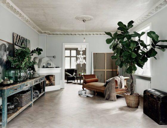 piante oversize in casa