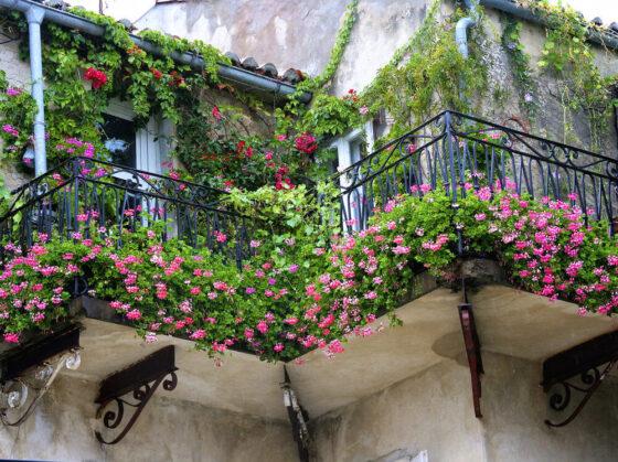come creare un piccolo giardino su un balcone
